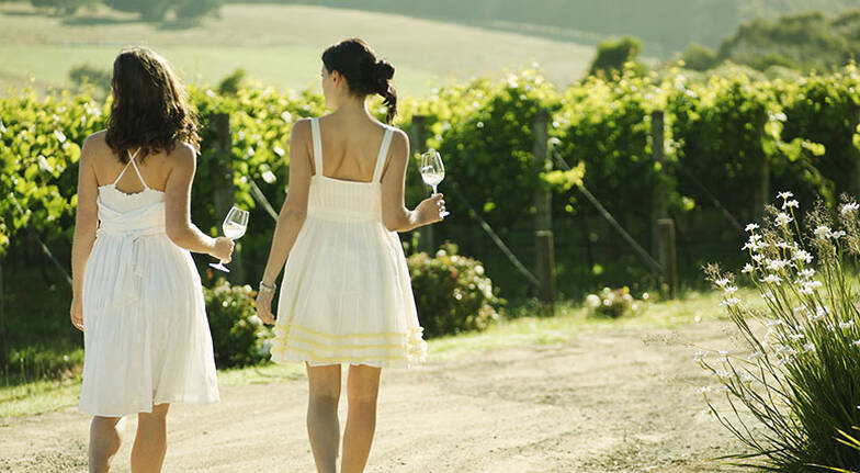 Full Day Yarra Valley Winery Tour with Tastings and Lunch