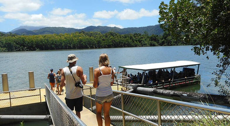 Cape Tribulation Explorer Tour with Lunch - Full Day