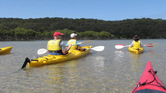 Guided Kayak Tour in the Royal National Park