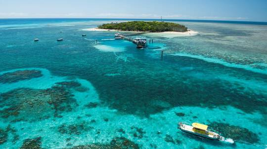 Green Island Cruise, Skyrail and Railway Adventure - Family