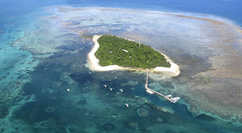 Reef Combo - Scenic Flight, Catamaran Trip and Island Visit