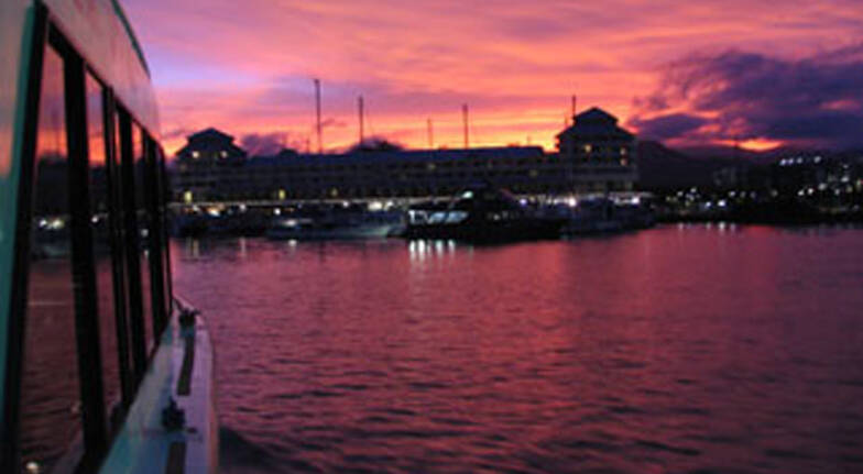 Cairns Evening Sunset Cruise - 90 Minutes - Child