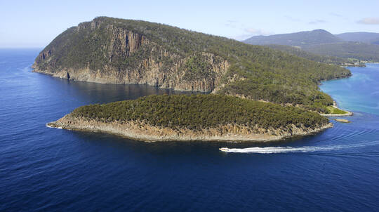 Bruny Island Cruise with Pick up from Kettering - Family