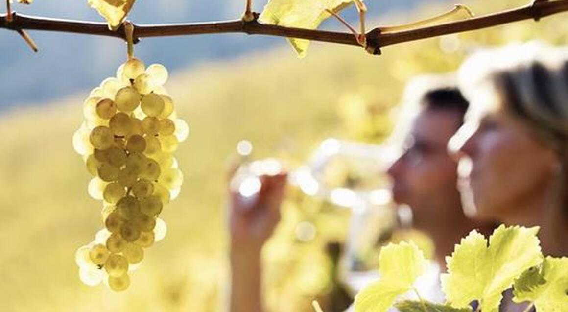 2 Night Hunter Valley Getaway with Case of Wine - Weekend