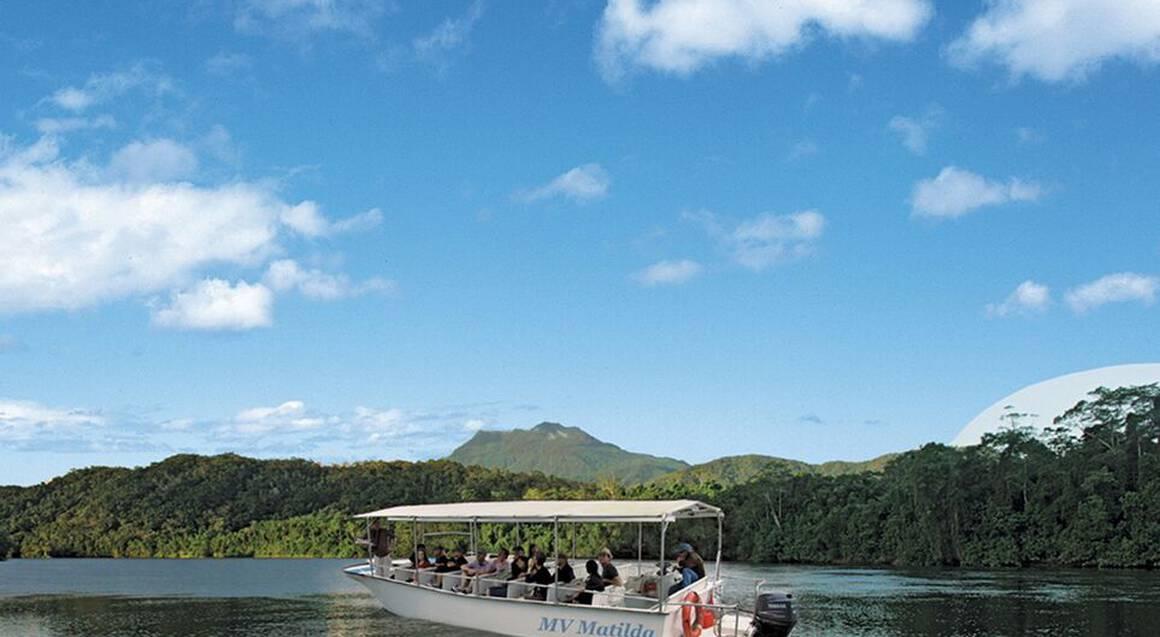 Daintree Rainforest, Cape Tribulation & 4WD Tour - Child