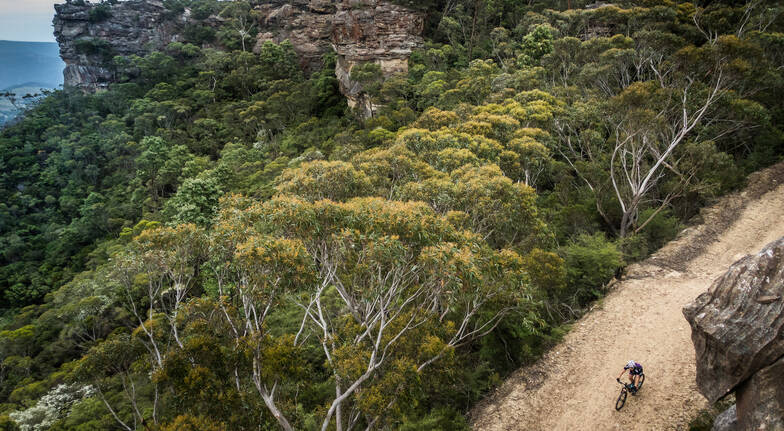 Mountain bike tour overhead shot of amazing view of bushland and a dirt track with a solo mountain bike rider on it