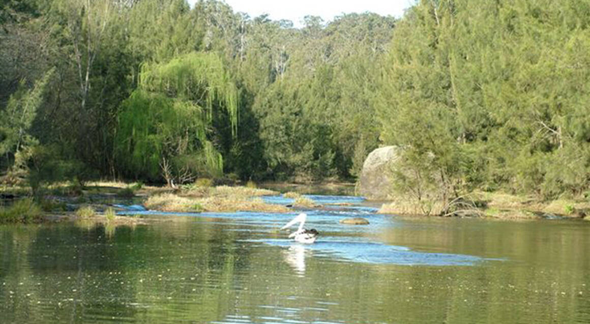 Cruise the Nepean River Gorge - For 2