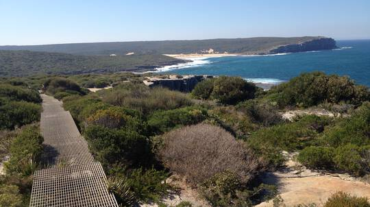 Royal National Park Paddle and Walk Adventure