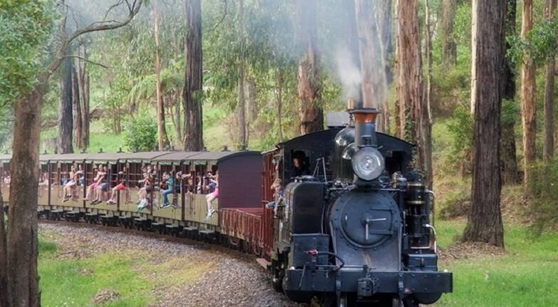 Healesville Sanctuary, Steam Train and Penguin Parade Tour