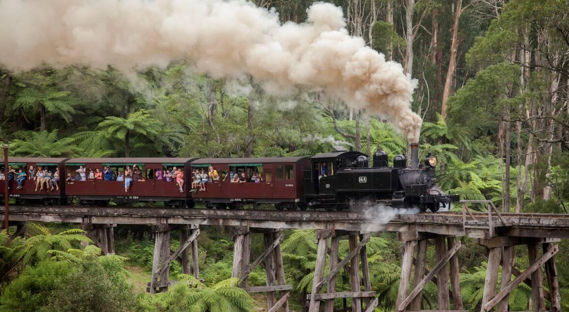 Healesville Sanctuary, Steam Train and Penguin Parade Tour