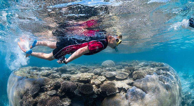 Coral Bay Quad Bike and Snorkel Adventure  25 Hours