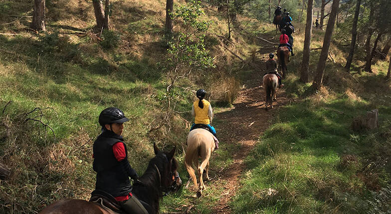 Kimberley Horse Trail Ride - 2 Hours