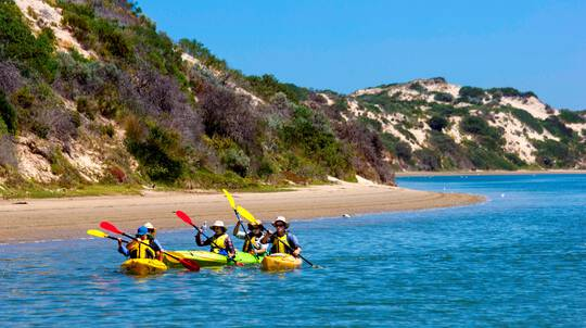 Full Day Guided Coorong Kayaking Tour with Lunch