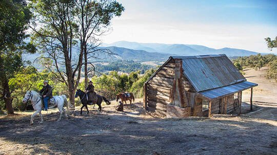 Yarra Valley Horse Trail Ride with Wine Tasting - 2.5 Hours