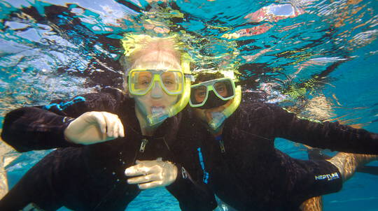 Full Day Great Barrier Reef Snorkelling Trip