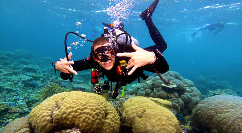 Scuba Diving Great Barrier Reef - Certified - Inc Levy Fee