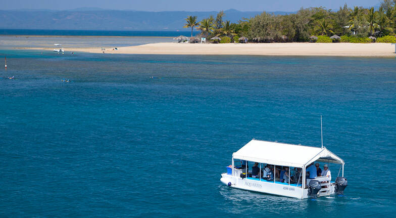 Low Isles Glass Bottom Boat Tour with Snorkelling and Snacks