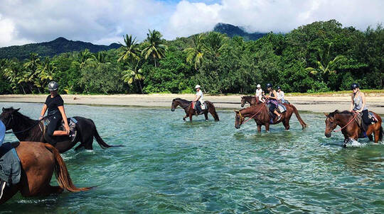 Cape Tribulation Beach Horse Riding - 90 Minutes