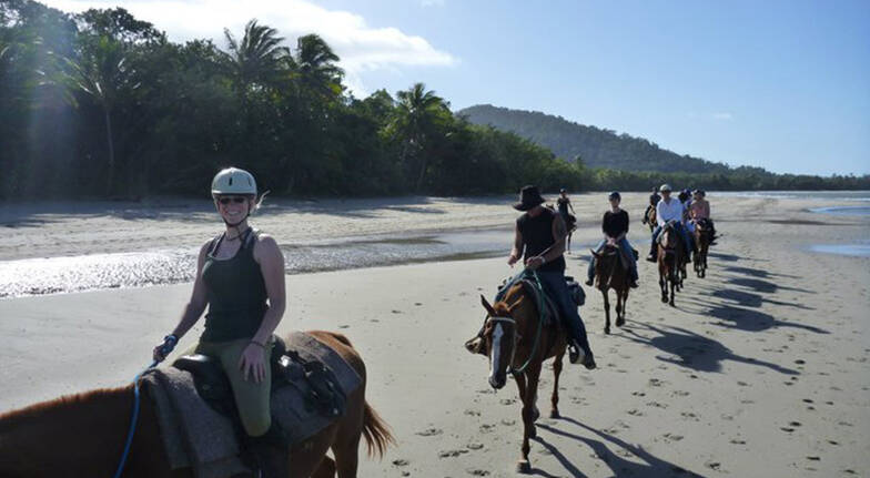 Cape Tribulation Beach Horse Riding  Afternoon  90 Minutes