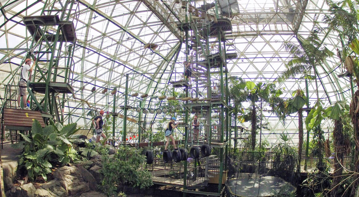 Four ZOOM Activities at Cairns Zoom & Wildlife Dome - Child