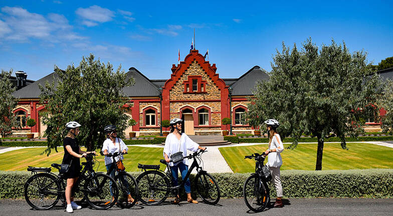 EBike Hire with Snack Hamper in the Barossa Valley