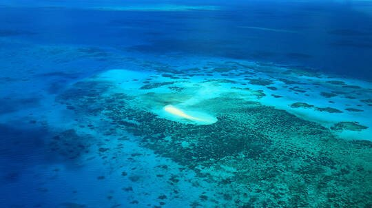 40 Minute Great Barrier Reef Scenic Flight - Cairns