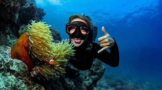 Cairns PADI Open Water Dive Course - 4 Days