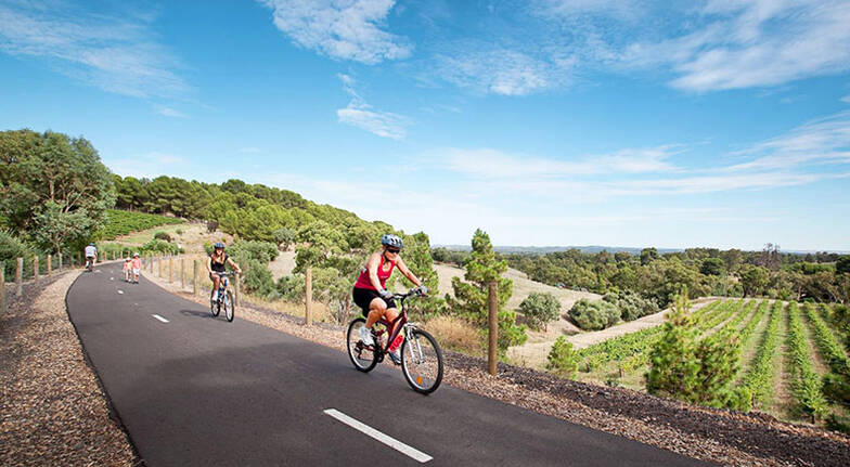 Cycling Tour of the Barossa Valley with Lunch and Tastings