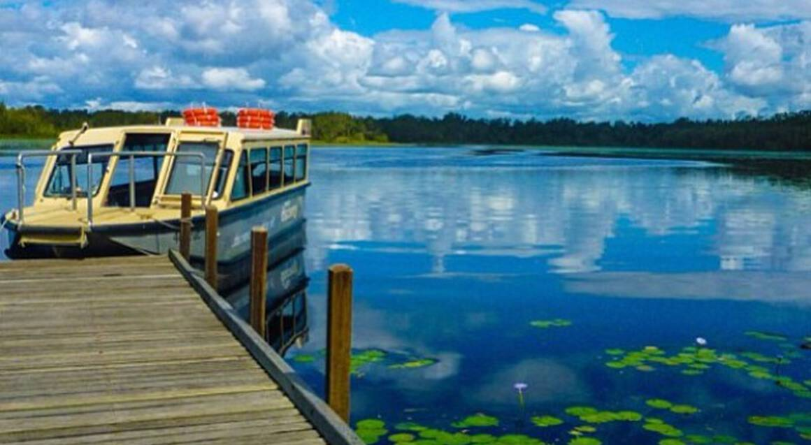 Noosa Everglades Wilderness Cruise with Lunch