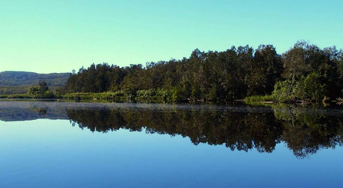 Noosa Everglades Serenity Cruise - Half Day