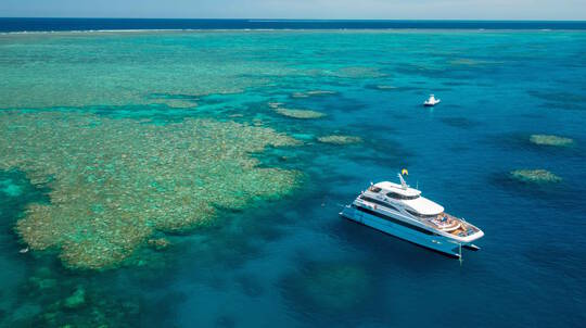 Great Barrier Reef Cruise and Snorkelling - Full Day