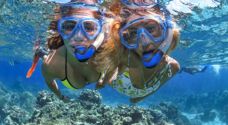 Gold Class Great Barrier Reef Cruise with Lunch - Full Day