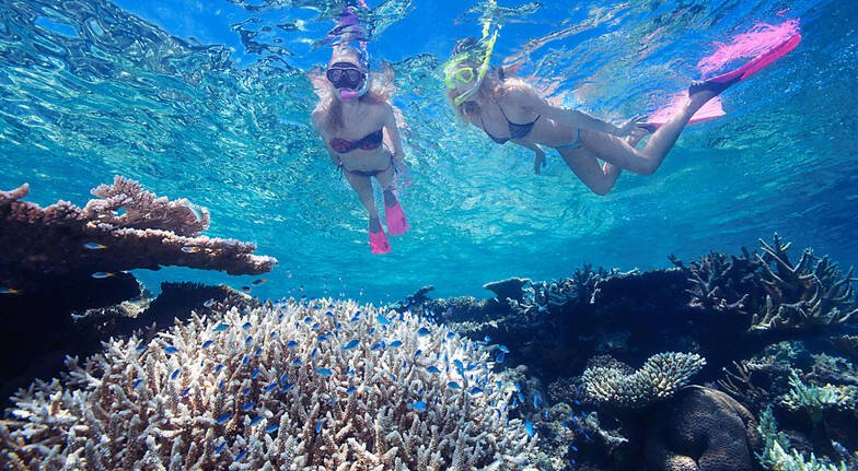 Great Barrier Reef Cruise, Snorkelling and Helicopter Flight