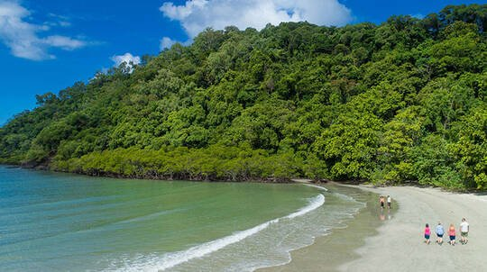 Reef Scenic Flight, Daintree River Cruise and More - For 2