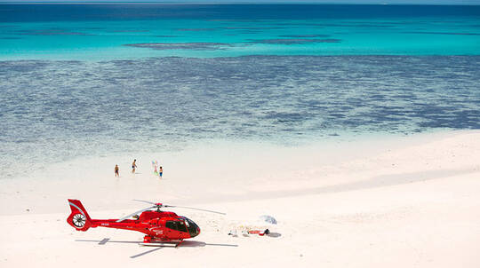 Great Barrier Reef Helicopter Flight with Picnic - For 2