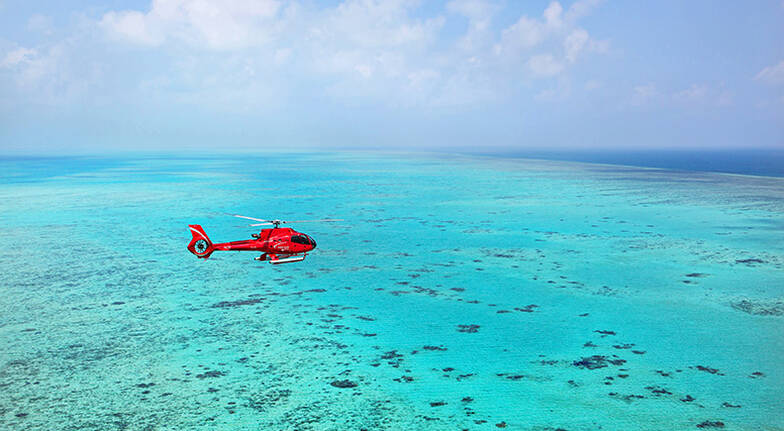 Great Barrier Reef and Rainforest Scenic Flight - 45 Minutes