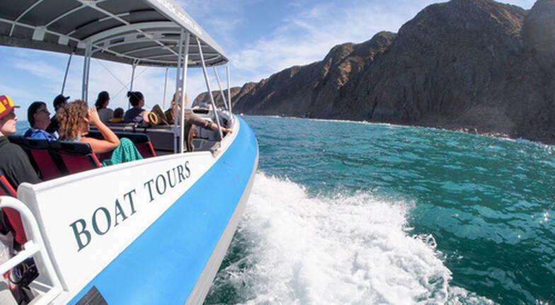 Southern Ocean Adventure Tour - 90 Minutes