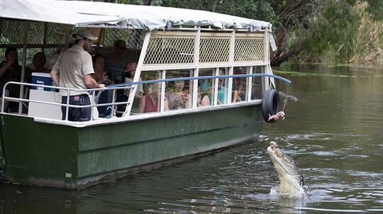 Hartley's Crocodile Adventures with Transfers - Half Day