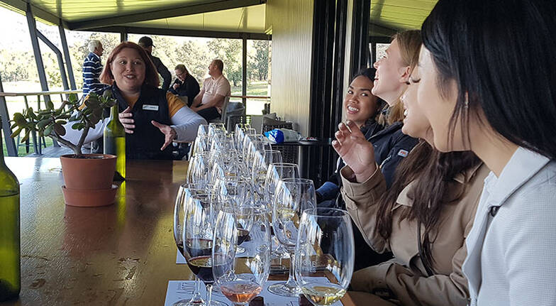Hunter Valley Wine, Gin, Chocolate and Cheese Tour - Sydney