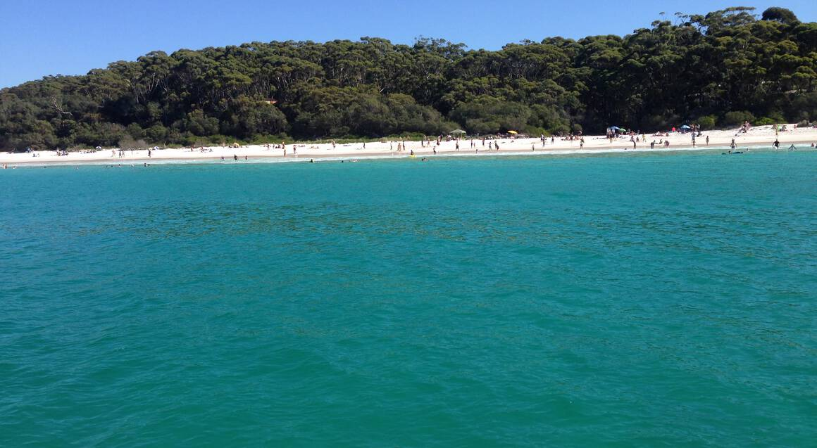 Best of Jervis Bay Dolphin Watching Cruise - 90 Mins