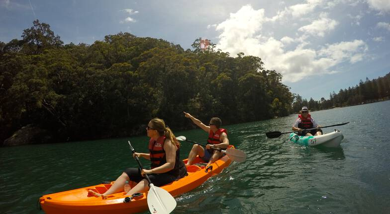Self Guided Double Kayak Safari - 3 Hours