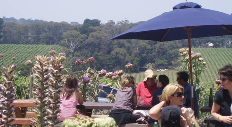 Full Day Mornington Peninsula Food and Wine Tour