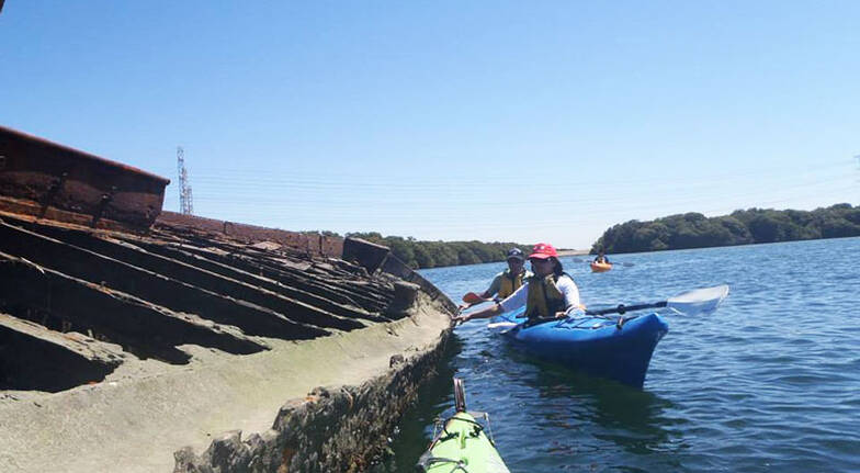Adelaide Dolphin Sanctuary Kayak Tour with Lunch  3 Hours