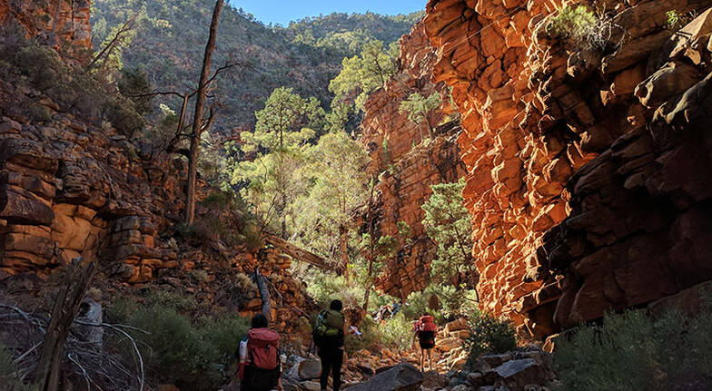 3 Day Flinders Ranges Nature, Culture and Wine Tour