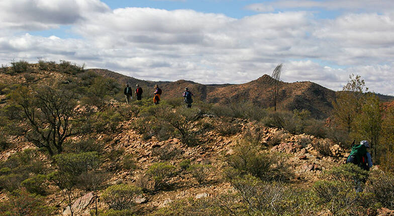 3 Day Flinders Ranges Nature Culture and Wine Tour