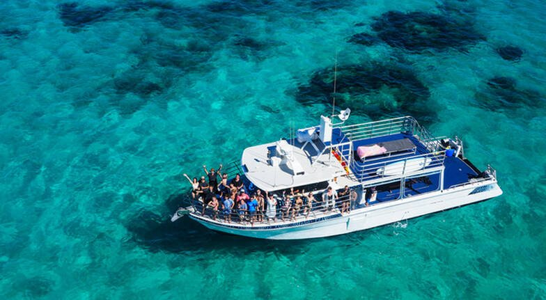 Whale Shark Swim on Powerboat with Lunch and Photos