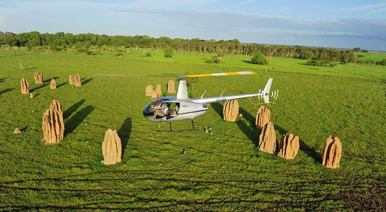 Top End Day Tour with Flight Cruise and Crocodile Encounter