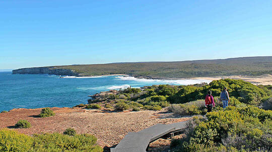 Royal National Park Guided Walk with Lunch - Full Day