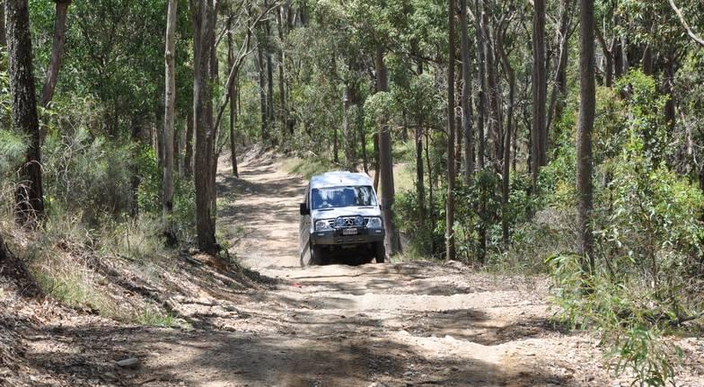 Mt Tamborine Outback Tracks Half Day Tour- Child