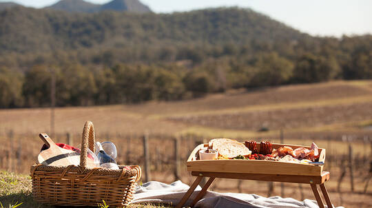 Picnic Among the Vines with Wine Tasting Masterclass - For 2